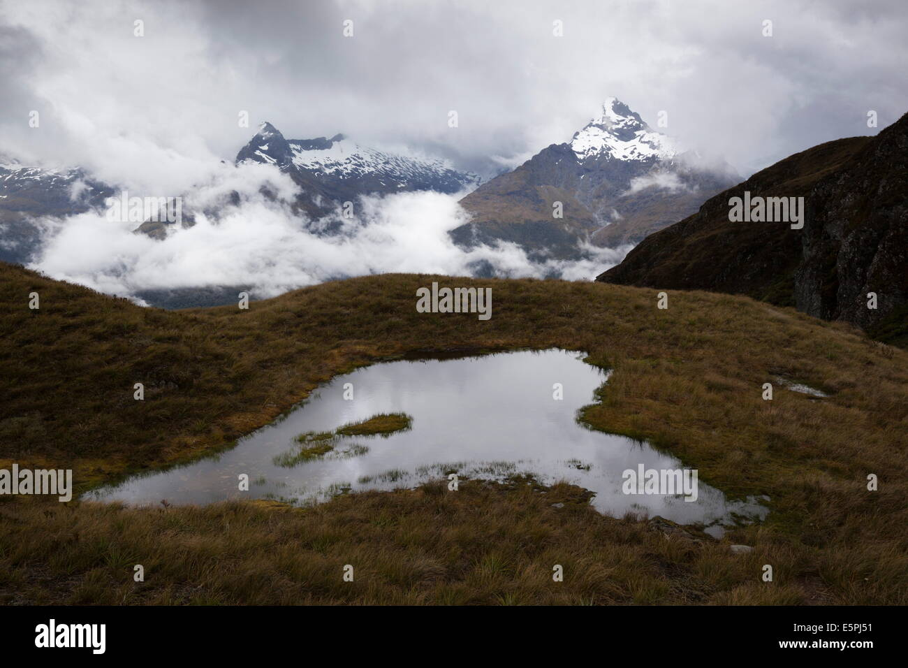 Darran Mountains and tarn from Harris Saddle, Routeburn Track, Fiordland National Park, UNESCO Site, South Island, - Stock Image