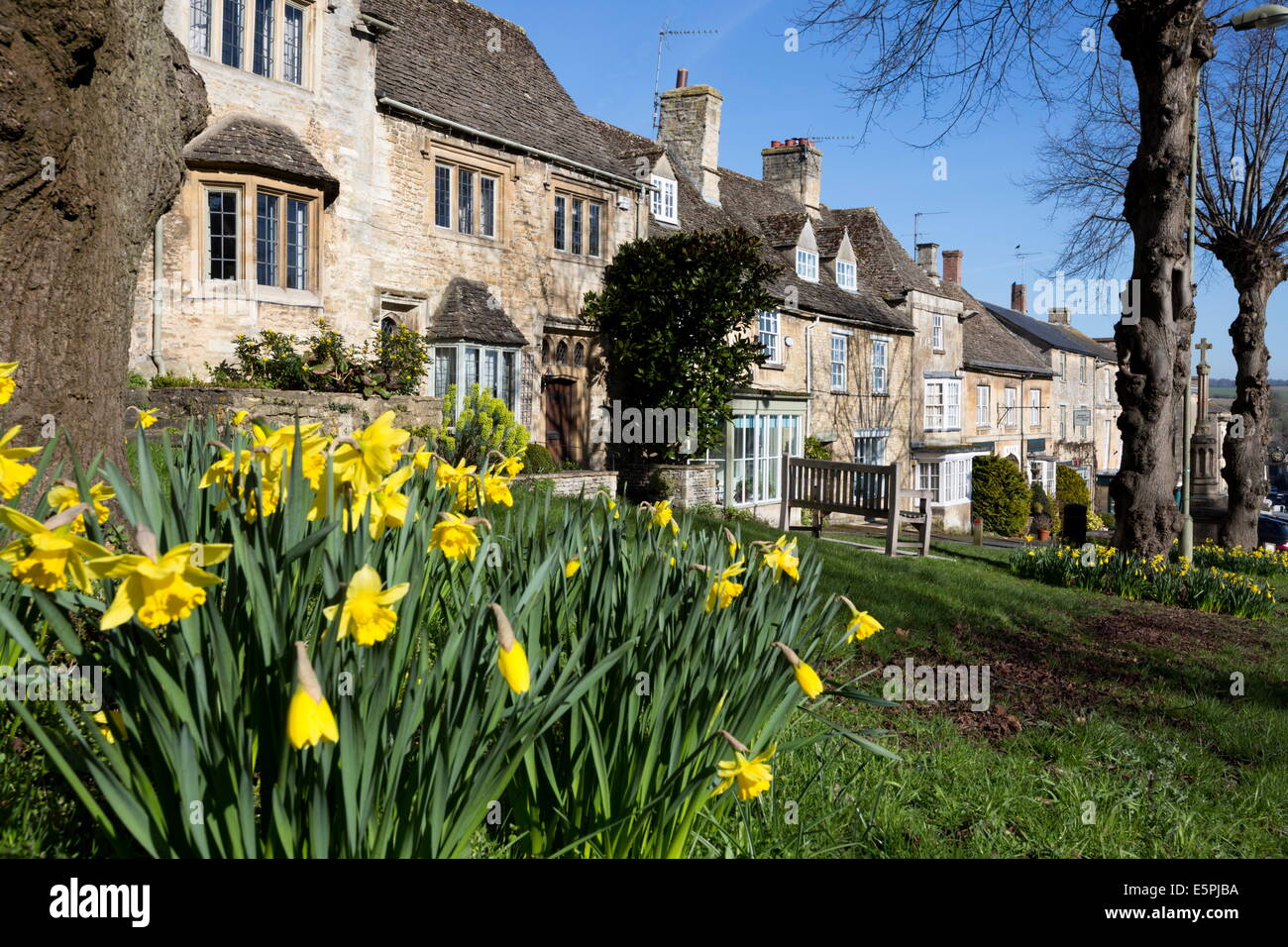 Cotswold cottages along The Hill with spring daffodils, Burford, Cotswolds, Oxfordshire, England, United Kingdom, - Stock Image