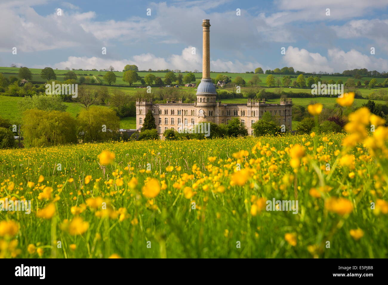 Bliss Mill with buttercups, Chipping Norton, Cotswolds, Oxfordshire, England, United Kingdom, Europe - Stock Image