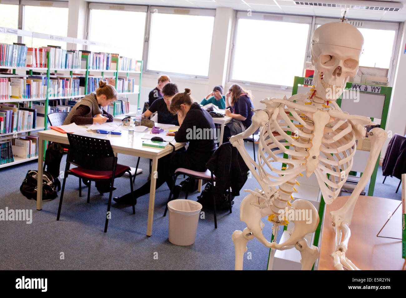 University library; Faculty of Medicine of Limoges, France. - Stock Image