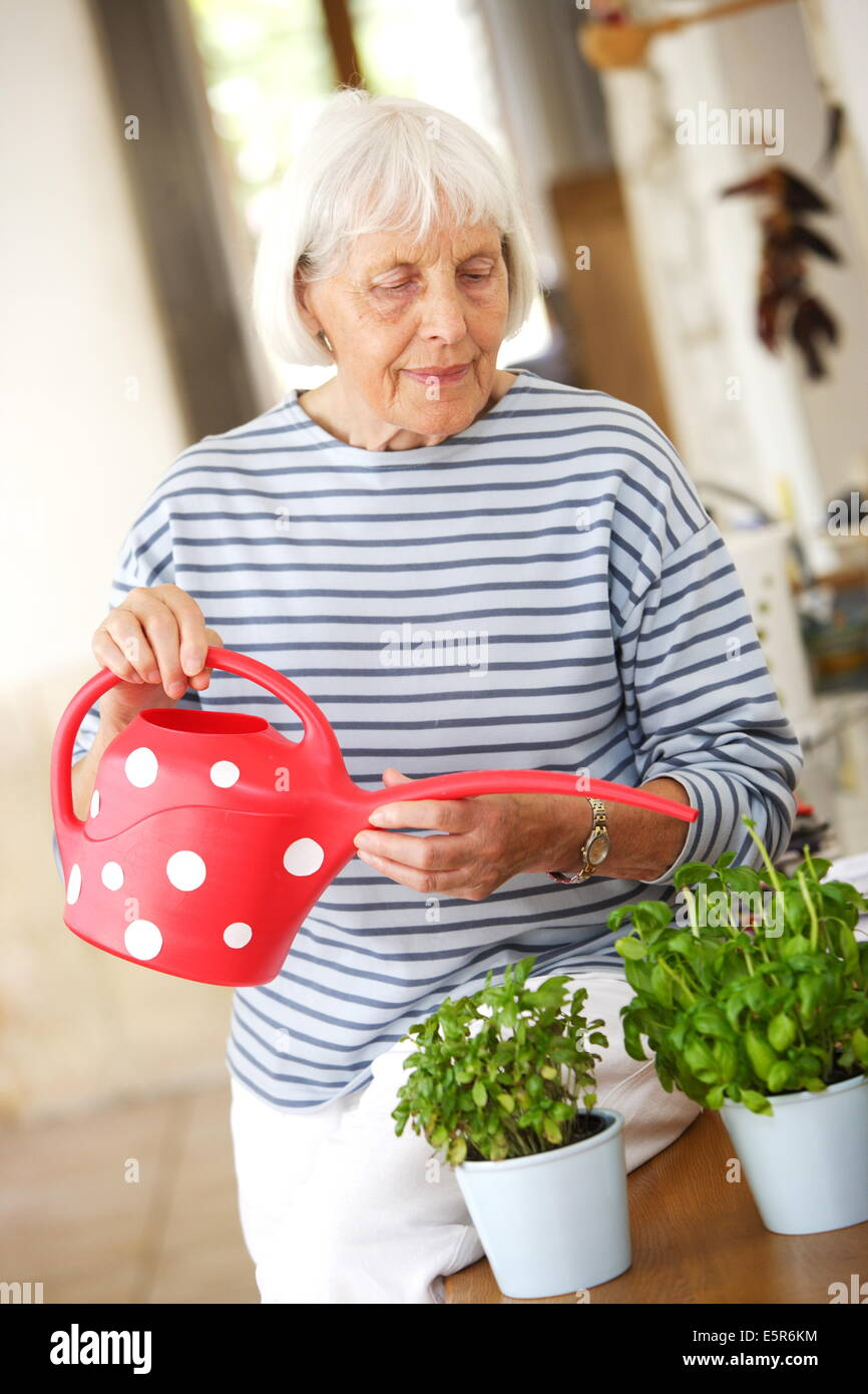 80 year old woman watering her plants. - Stock Image