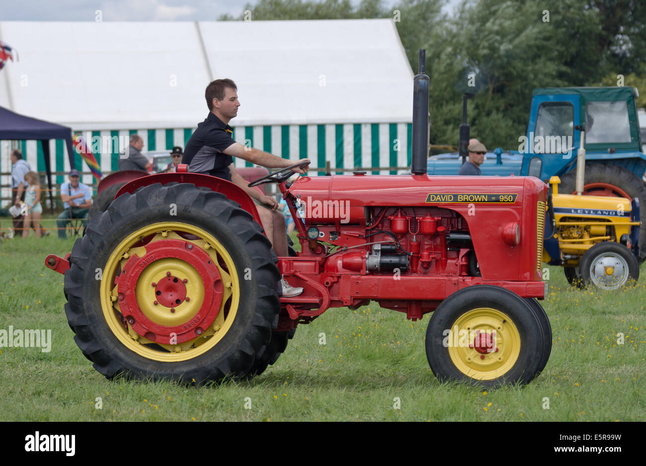 david brown 950 vintage tractor on display at the bucks country fair -  stock image