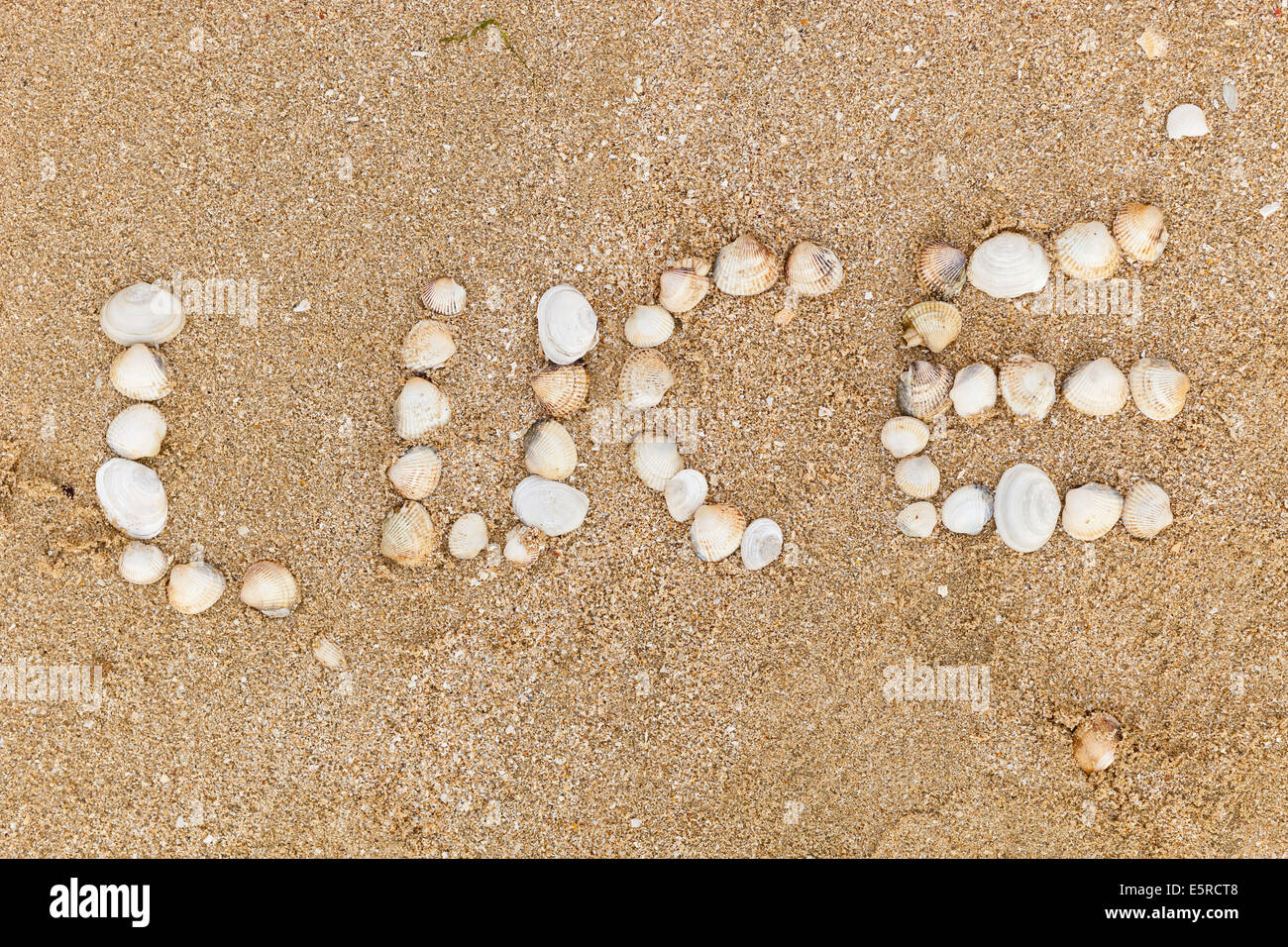 Name Luce written with seashells on the sand. - Stock Image