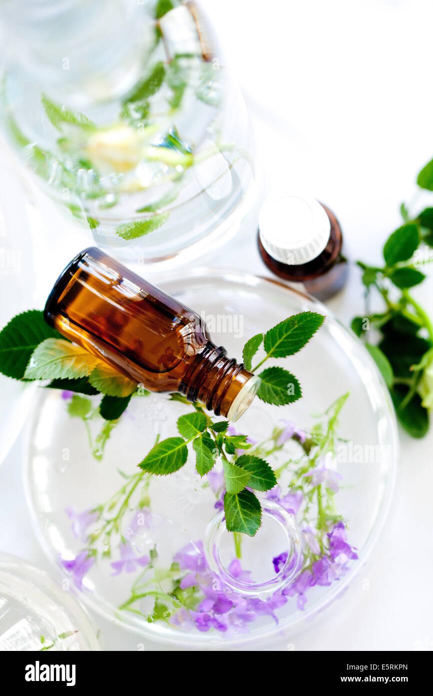 Essential oils. - Stock Image