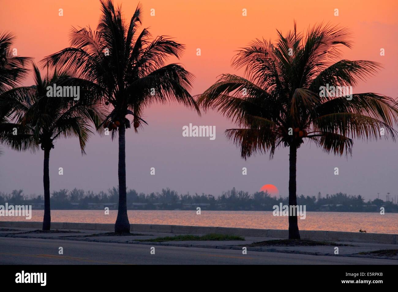 Sunset in Key West, Florida, USA - Stock Image