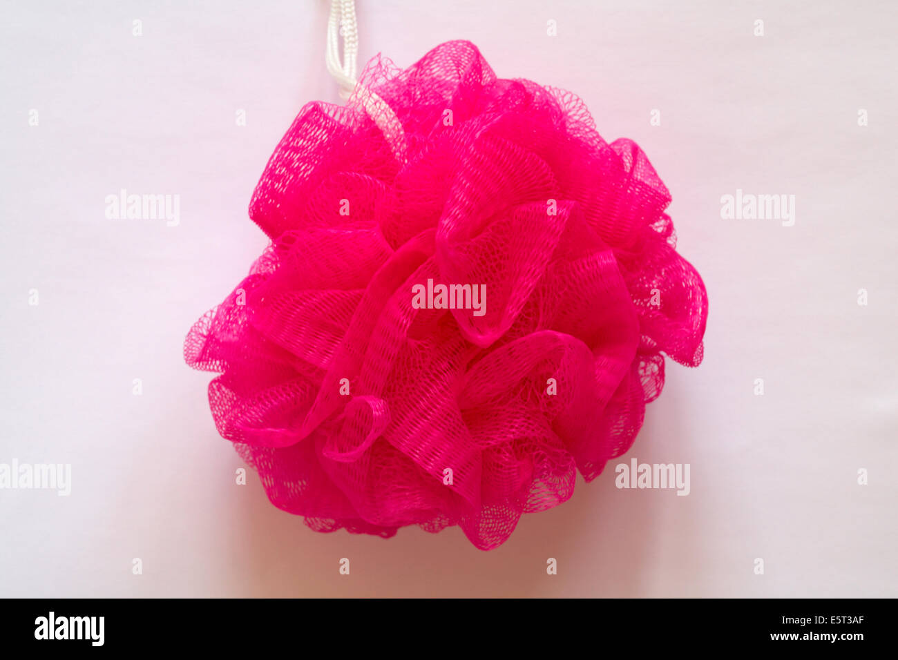pink body mop for bathing set on white background - Stock Image