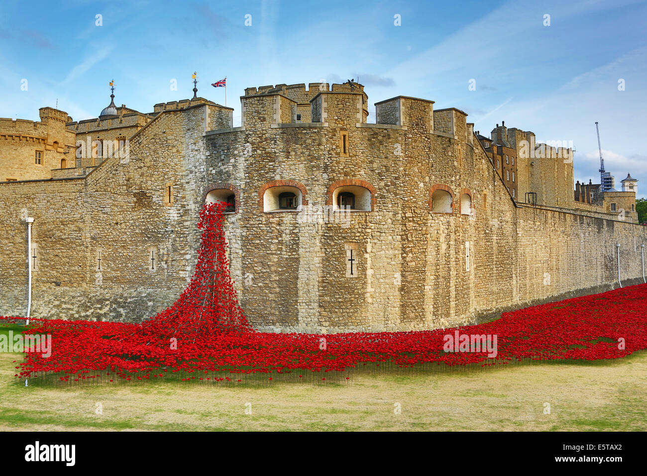 London, UK. 5th August 2014. The sea of poppies around the Tower of London at the opening of the  Blood Swept Lands - Stock Image