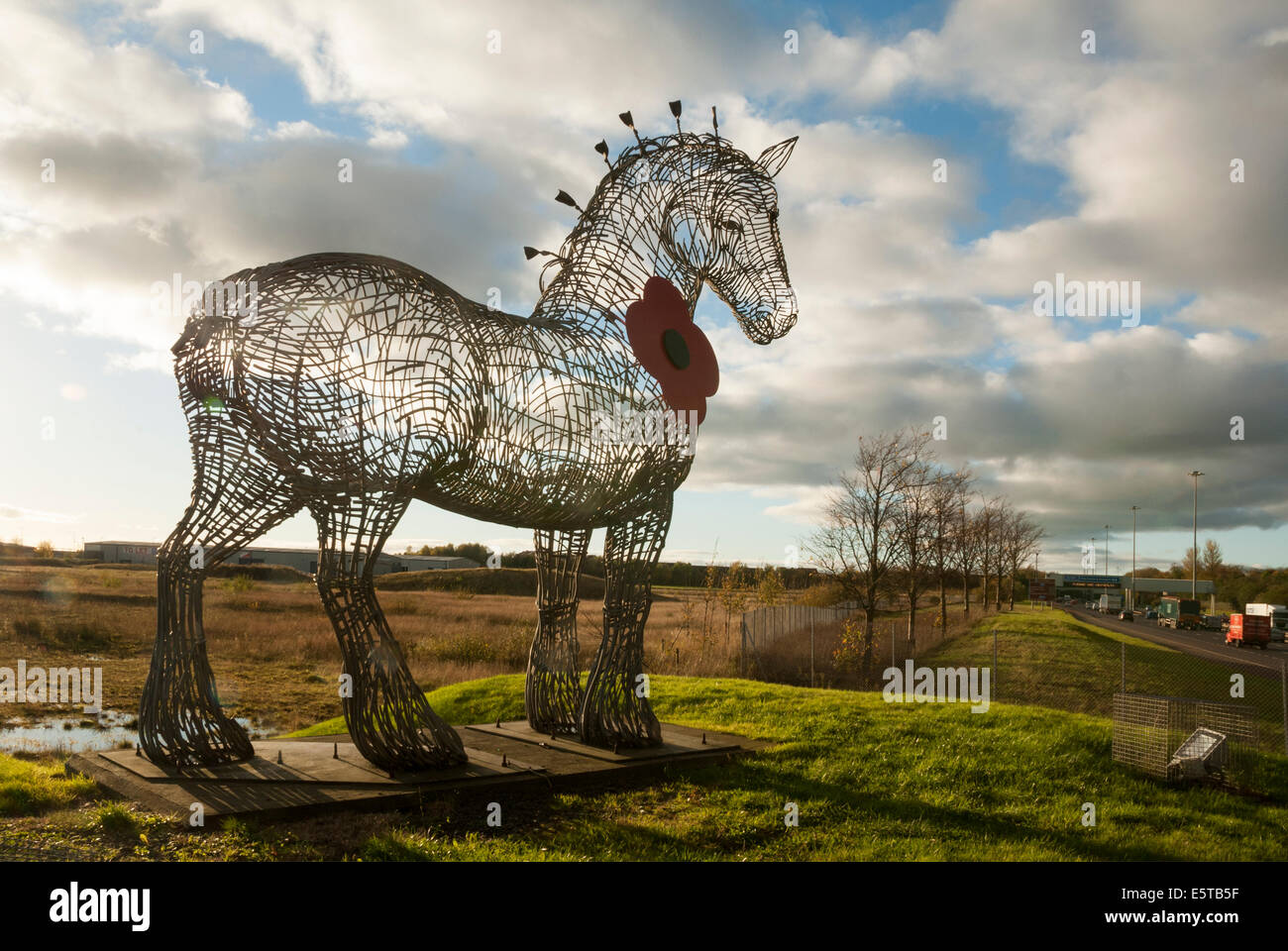 Andy Scott's Heavy Horse Sculpture at  the M8 Motorway wearing a Poppy in the lead up to Remembrance Day on - Stock Image