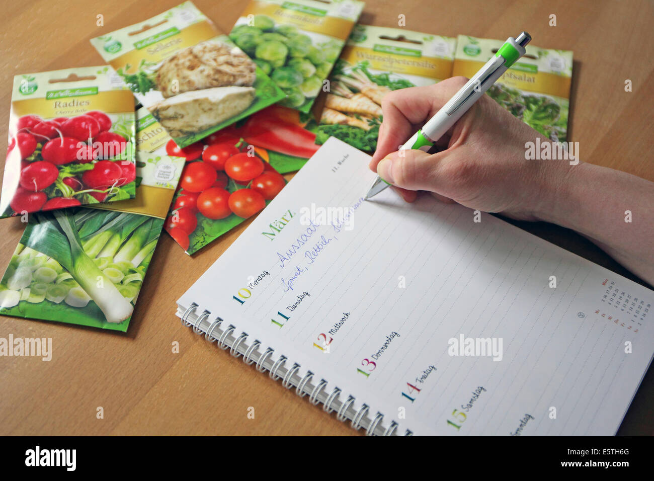 Sowing dates are noted on a calendar next to packets of various seeds - Stock Image