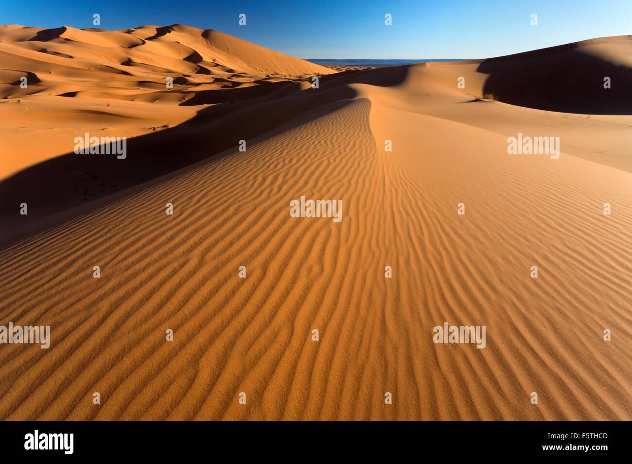 Orange sand dunes and sand ripples, Erg Chebbi sand sea, Sahara Desert near Merzouga, Morocco, North Africa, Africa Stock Photo