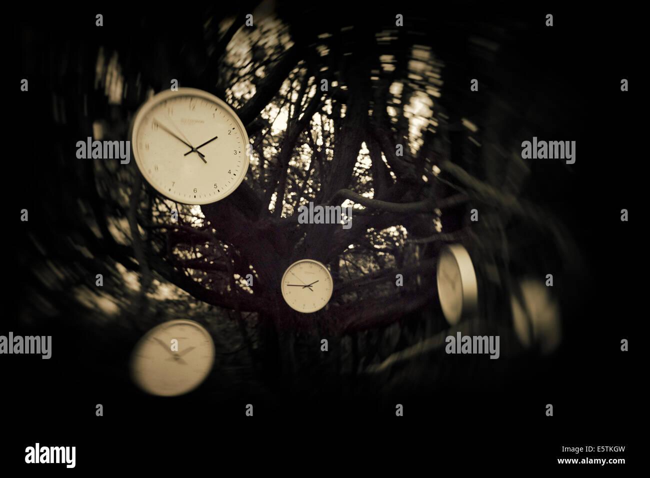 Time Tree - Stock Image