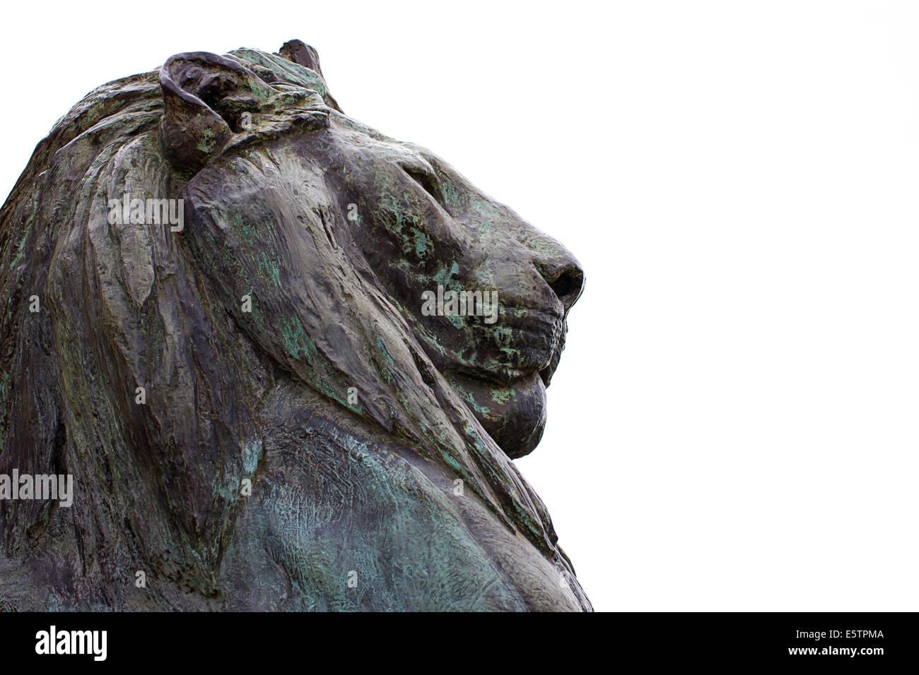 Bronze male lion statue - Stock Image