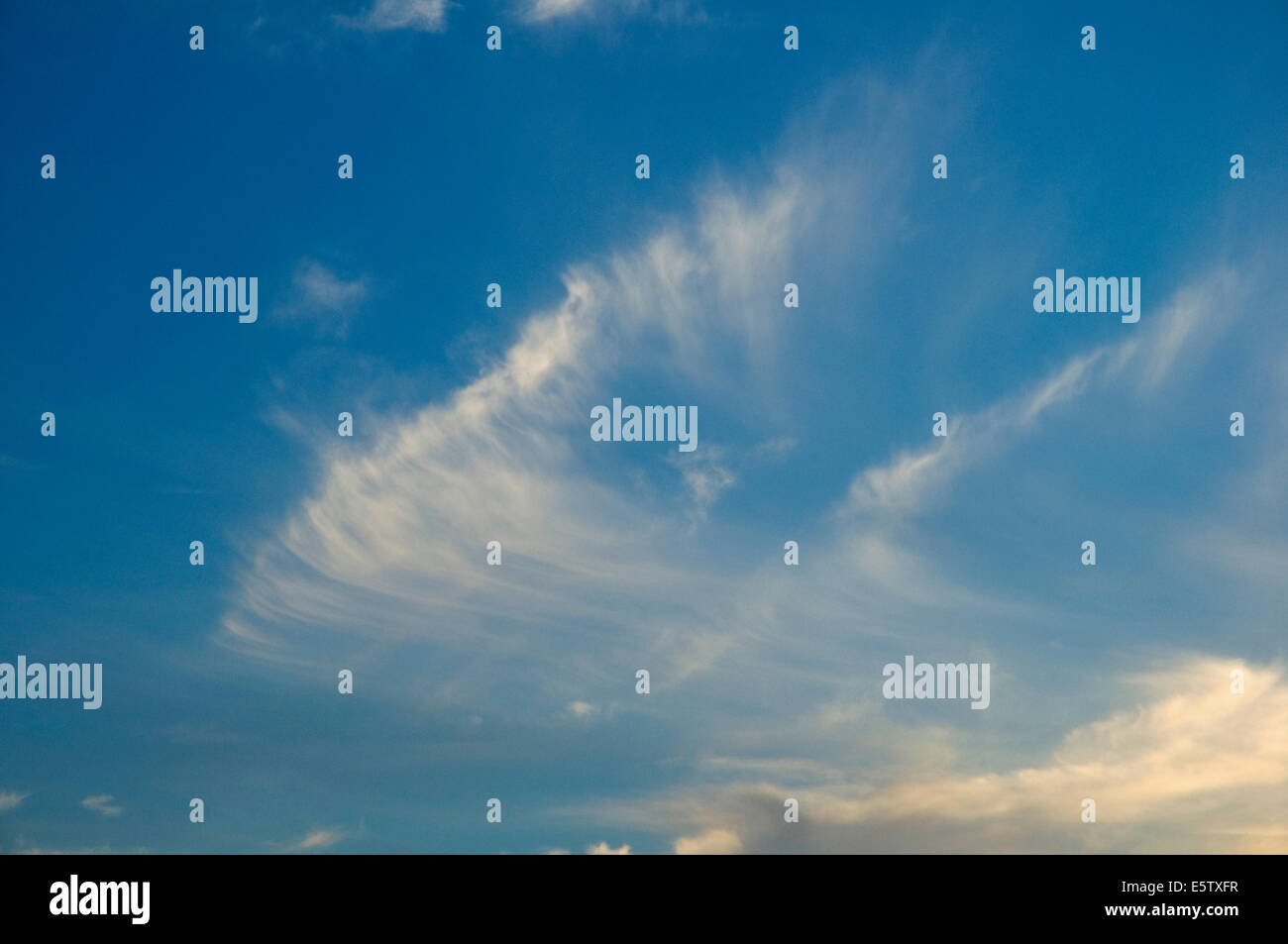 A wisp of high Cirrus clouds on a summer evening - Stock Image