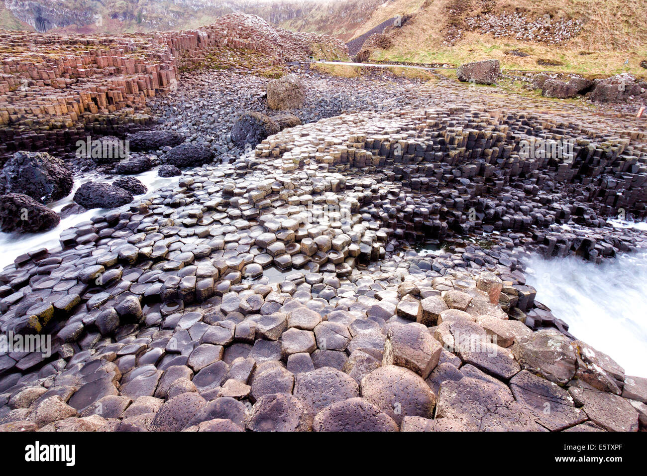 Giants Causeway, Northern IrelandStock Photo