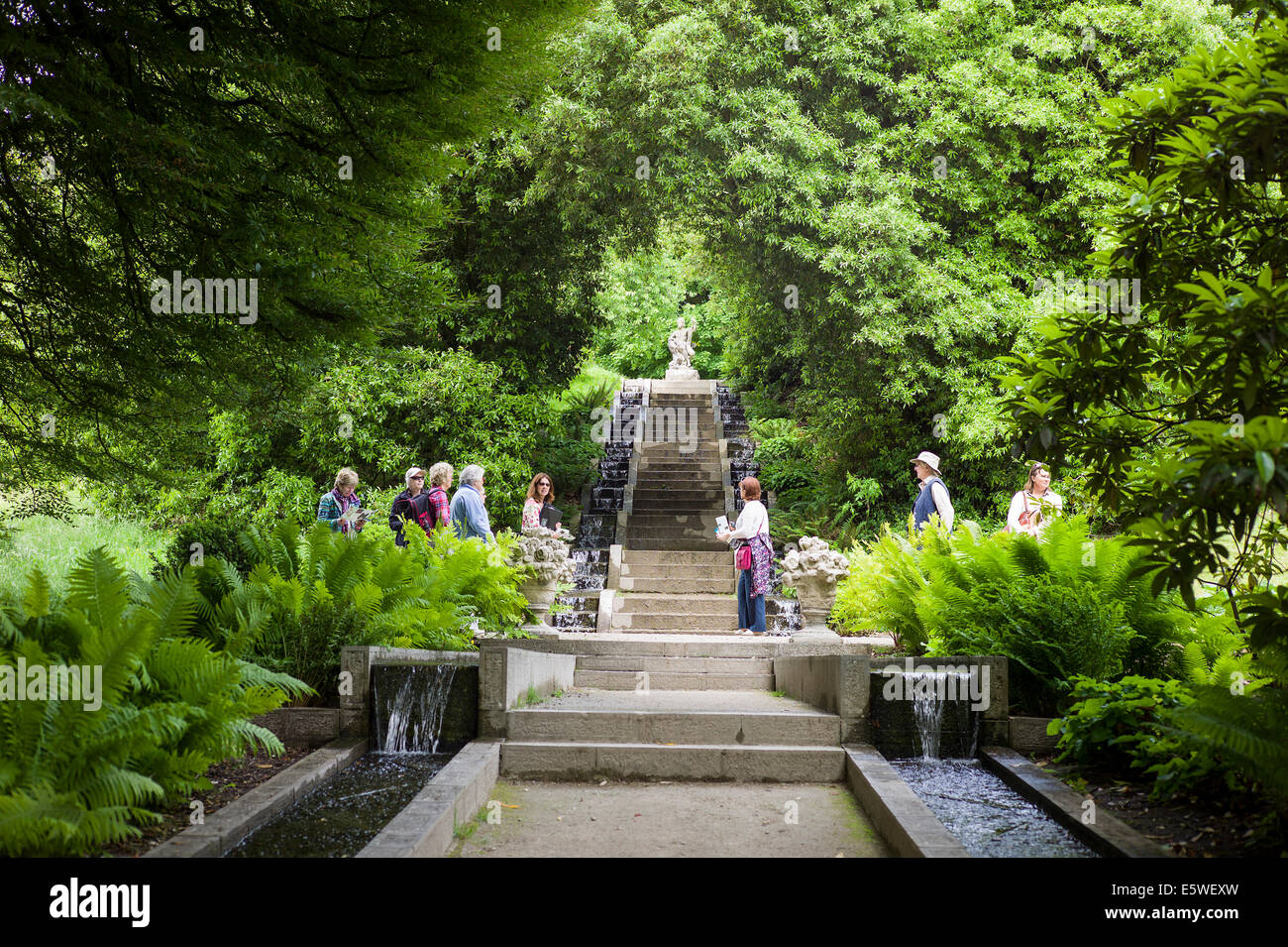 Guide with visitors to a verdant landscape garden with water rills at Holker Hall in Cumbria UK - Stock Image