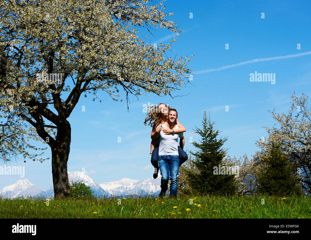Man carrying a woman, smiling, in front of a flowering tree in the spring, Tyrol, Austria Stock Photo
