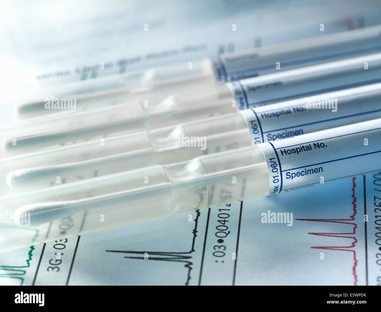 A row of DNA samples from family members being genetically tested for paternity - Stock Image