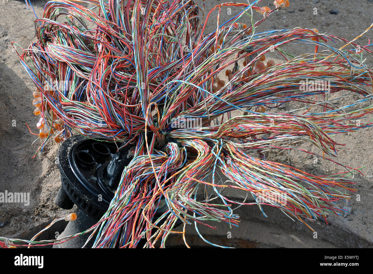 Wiring loom, telecommunications cable - Stock Image