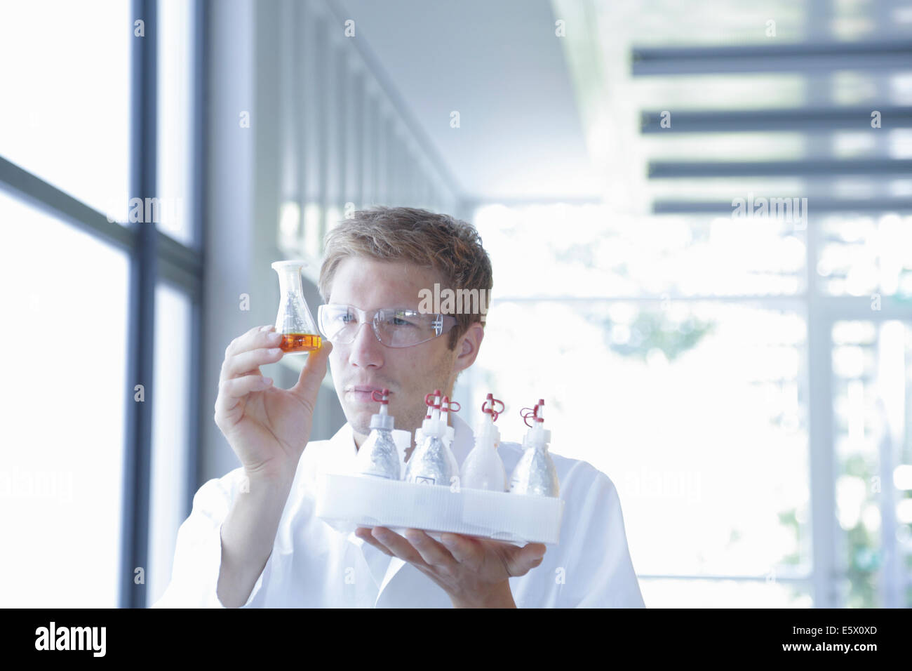 Male scientist analyzing erlenmeyer flask in lab - Stock Image
