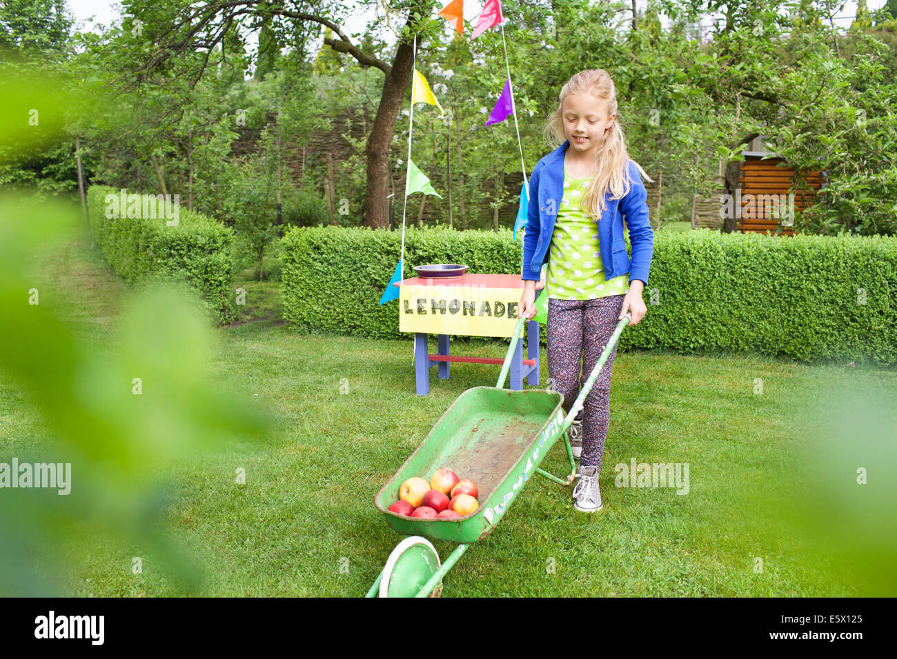 Lemonade stand girl carting apples away from her stand - Stock Image