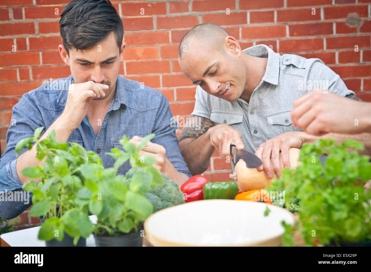 Male friends preparing food with herbs for garden barbecue - Stock Image