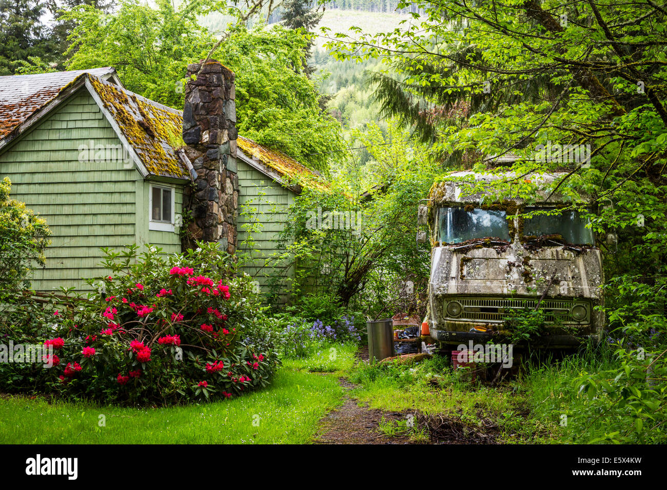 A Moss Covered Home And Rv Near Cottage Grove Oregon Usa