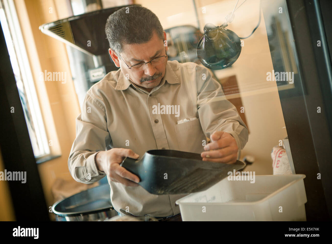 Mature man using coffee bean scoop for coffee roasting machine in cafe - Stock Image