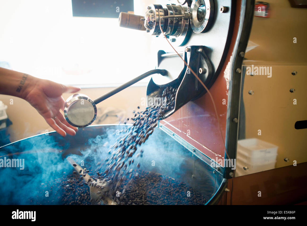 Female hand using industrial coffee roasting machine in cafe - Stock Image