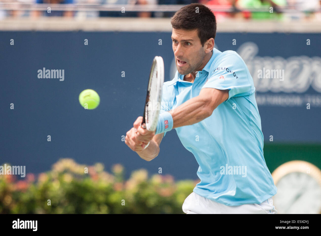 Toronto, Canada. 07th Aug, 2014. Novak Djokovic returns the ball during his match against Jo-Wilfried Tsonga at - Stock Image