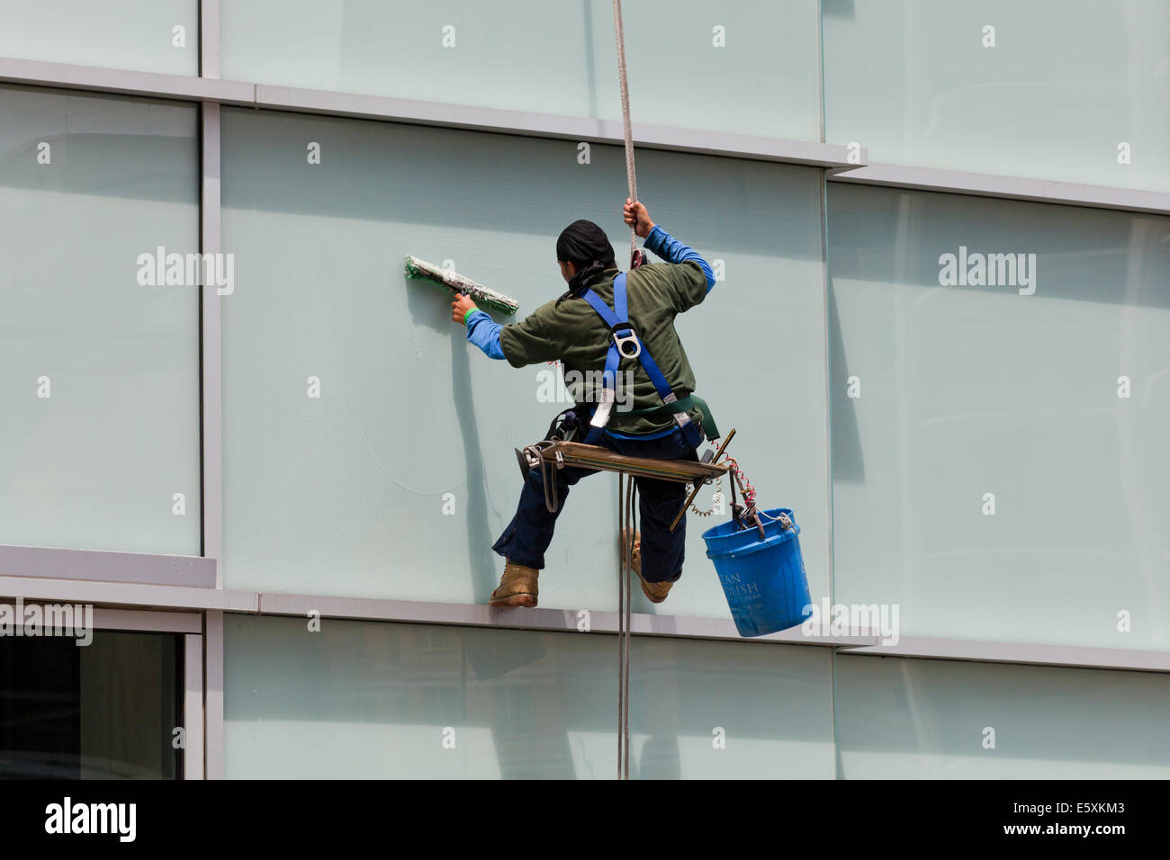 High rise window cleaner  sitting in a bosun's chair - USA - Stock Image