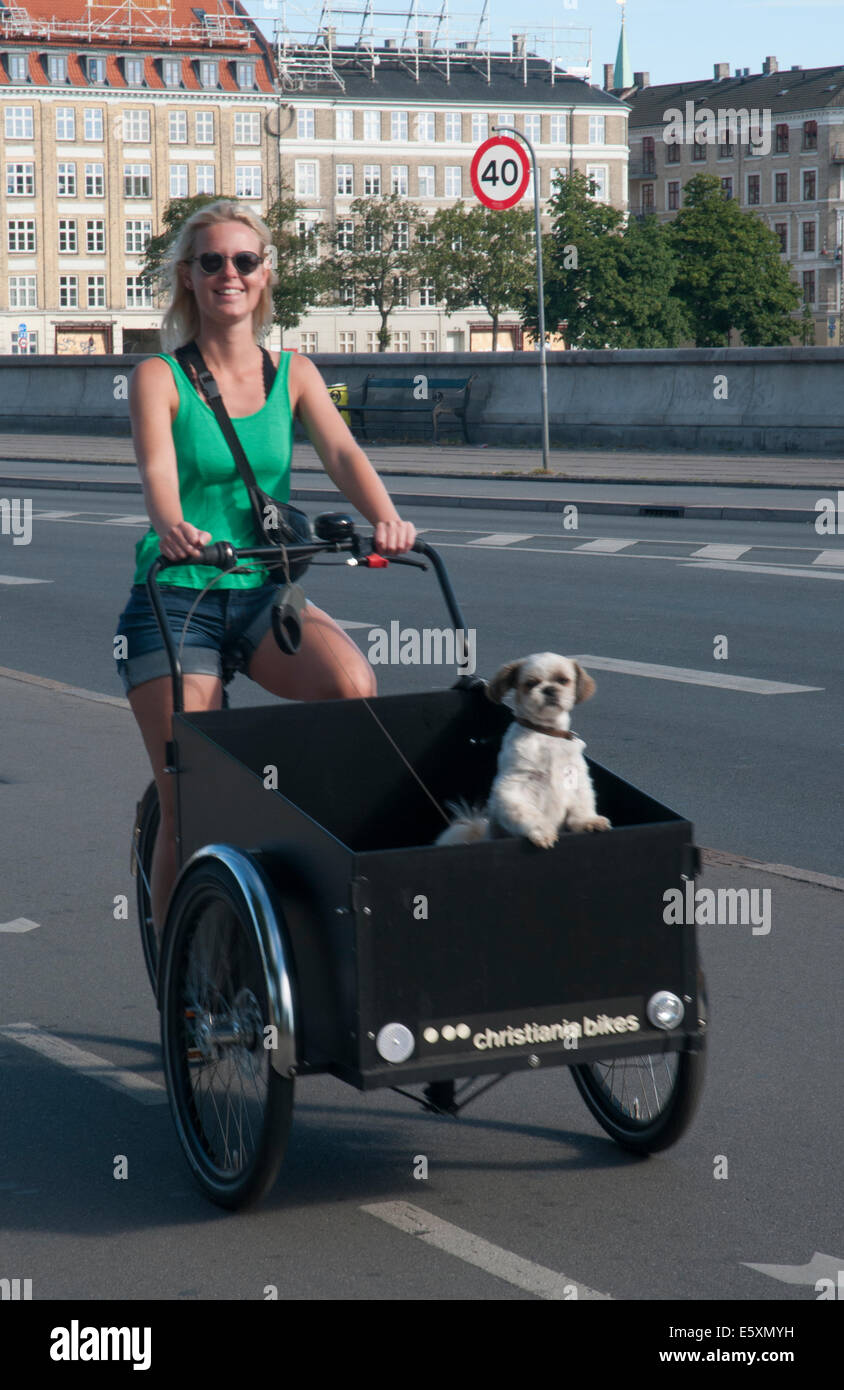 Young woman cycling with her dog across Dronning Louises Bro, Copenhagen - Stock Image