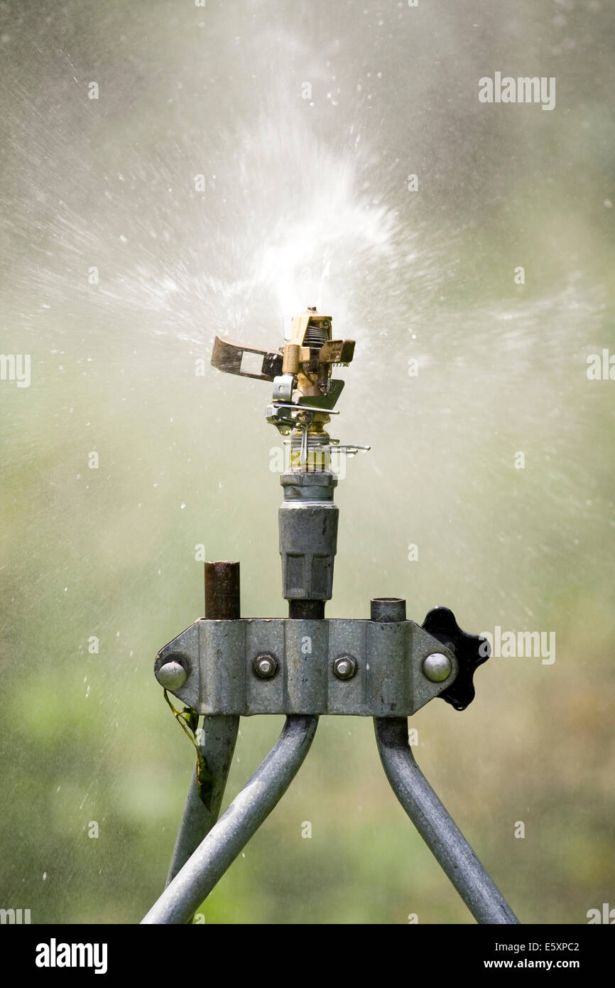 Rain Bird Adjustable Brass Impact Rotor Blade making contact with a water stream coming out of the sprinkler head - Stock Image