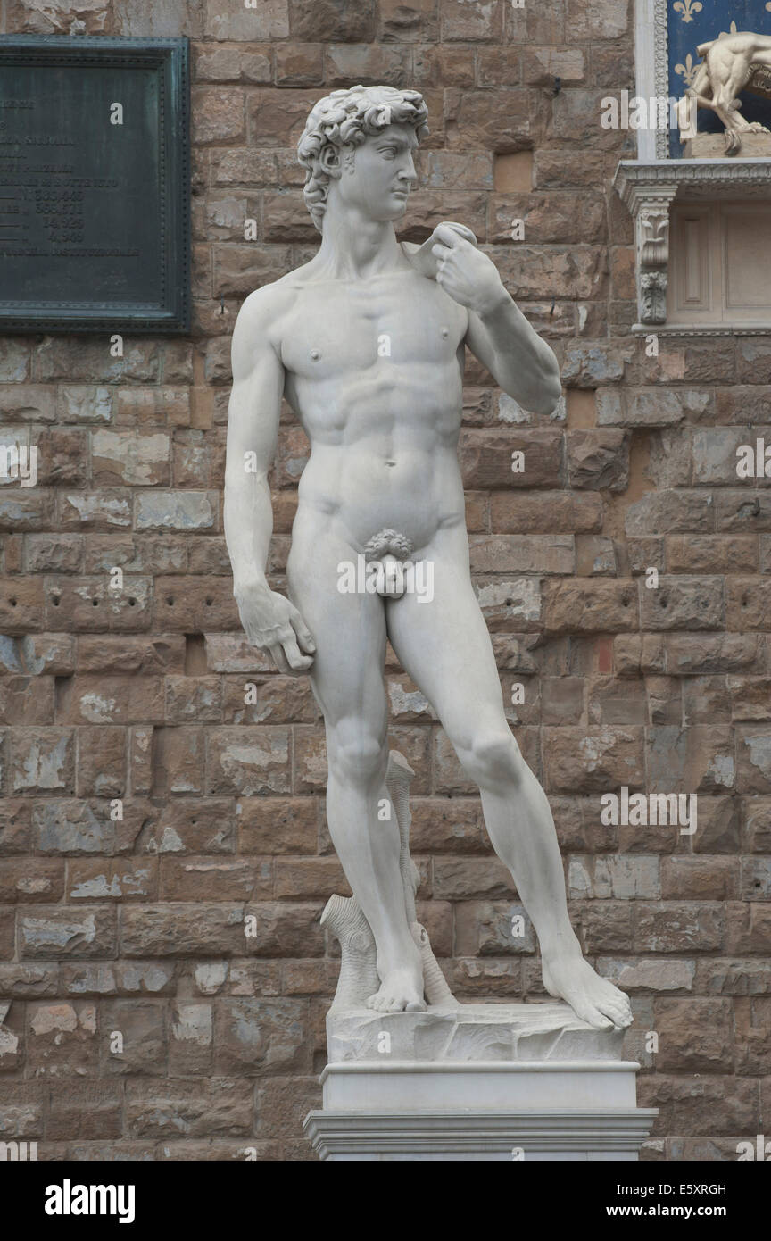 a depiction of michelangelo by david This representation is a sign of the renaissance era and michelangelo strong political views in that to the italian people, the statue of david is more of a depiction of the city than of the battle between david and goliath.