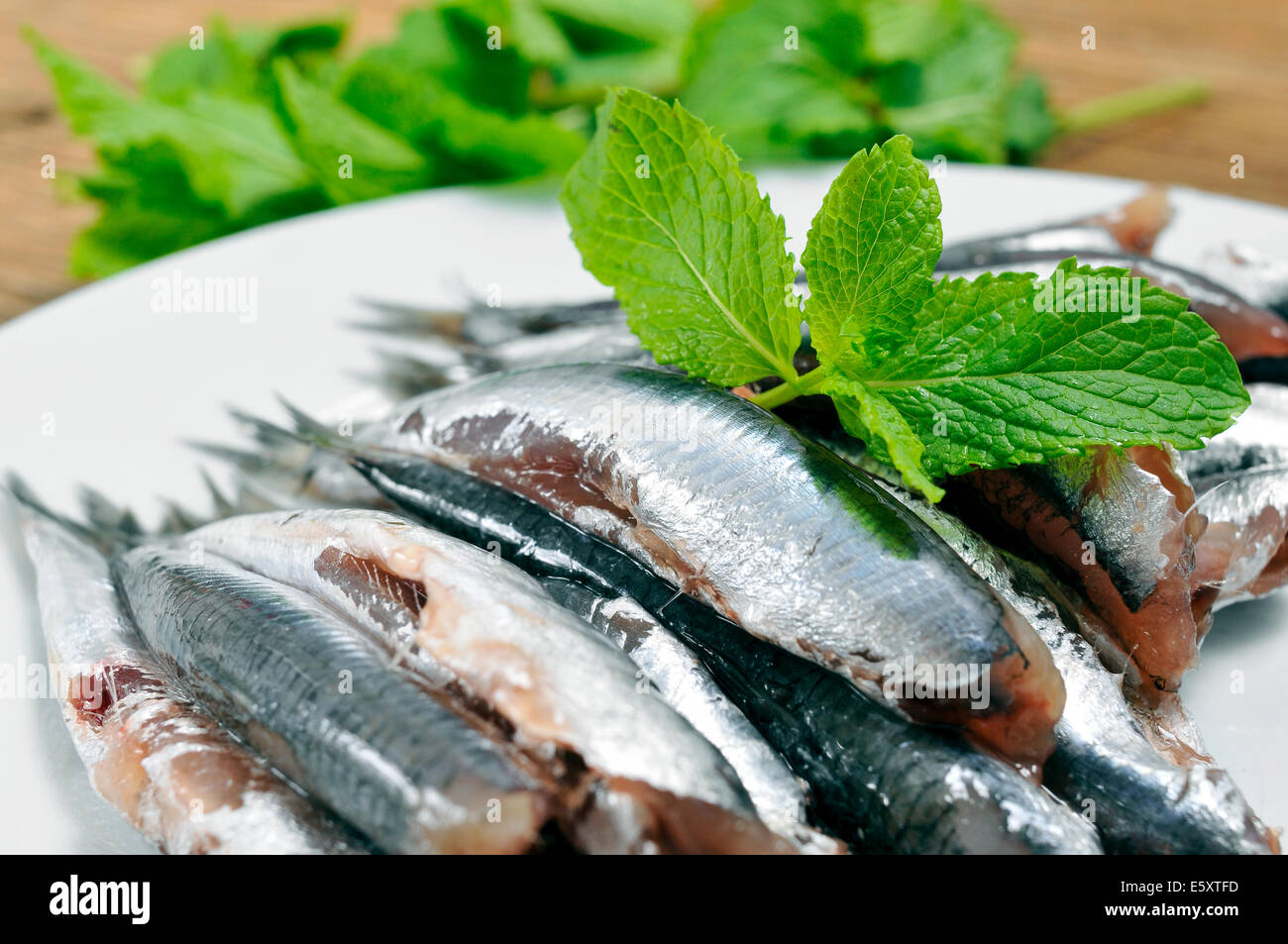 a plate with some raw spanish boquerones, anchovies typical in Spain, ready to be cooked - Stock Image