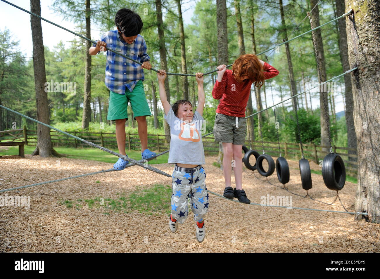 School friends swinging in the adventure park at Garwnant Forest, Powys near Merthyr Tidfil, wales Stock Photo