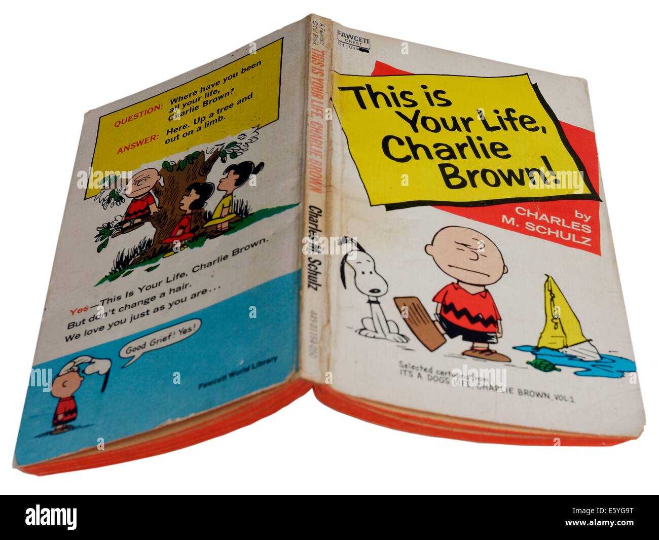 This is Your Life, Charlie Brown by Charles Schulz Stock Photo
