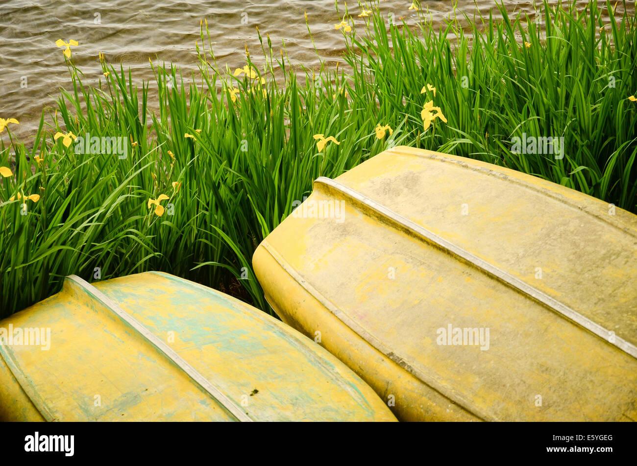 Small yellow boats in Lake Ashinoko at Hakone, Ashigarashimo District, Kanagawa Prefecture, Japan. - Stock Image