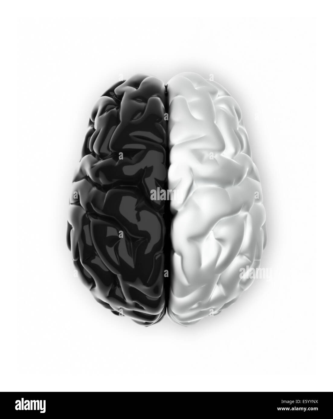 Brain in black and white like Yin and Yang - 3d render - Stock Image