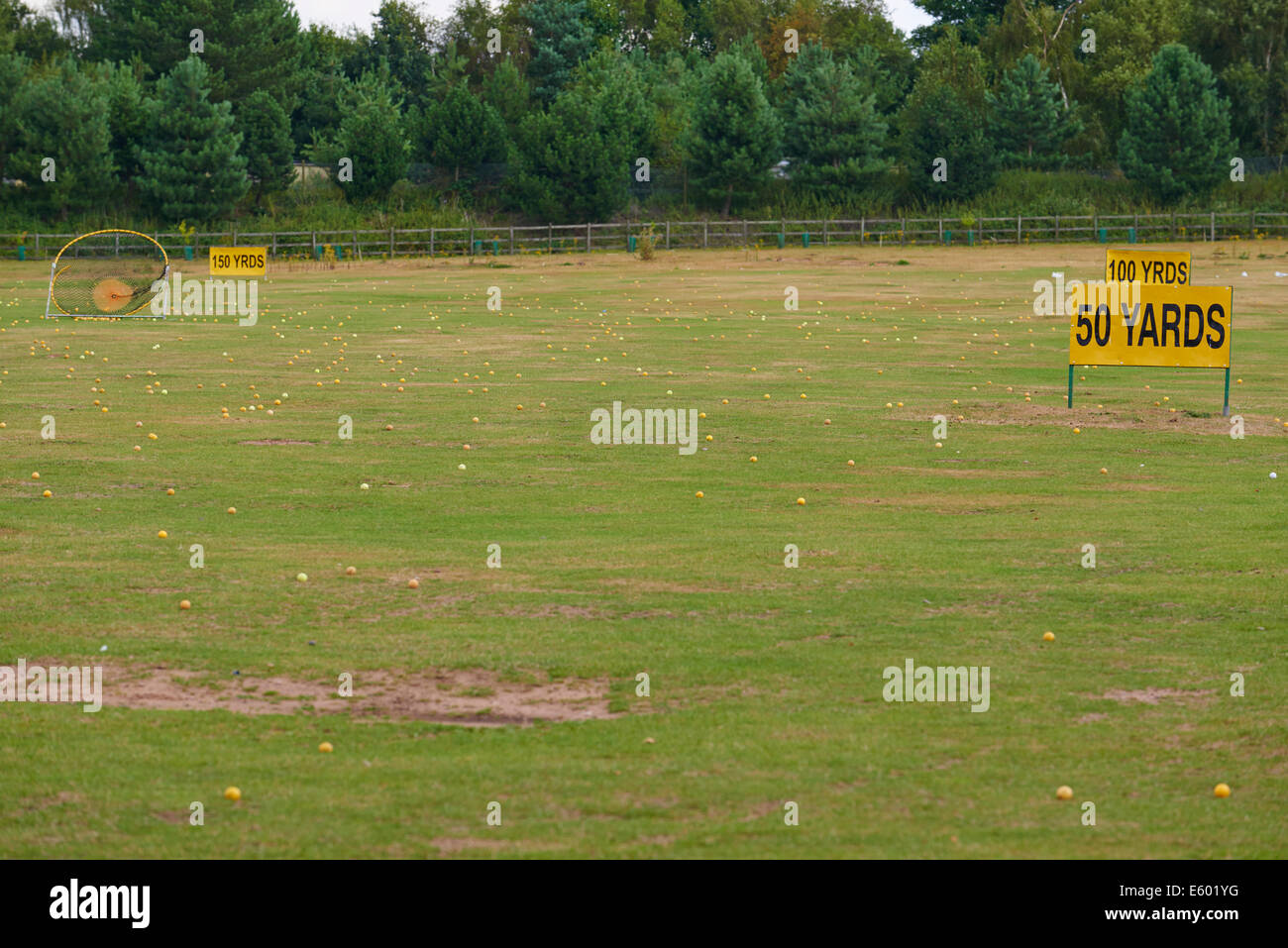 Target Greens At A Golf Driving Range Center Parcs Sherwood Forest UK - Stock Image