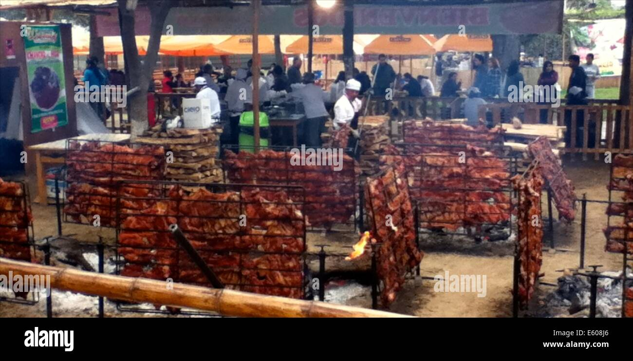 Racks of 'Chanco al Palo' (smoked pork) cook over open flames at the
