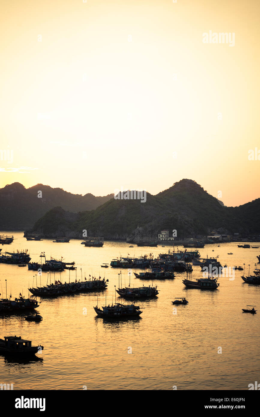 8013f7b1bd Sunset at port with lots of fishing boats. Cat Ba Island, Vietnam ...