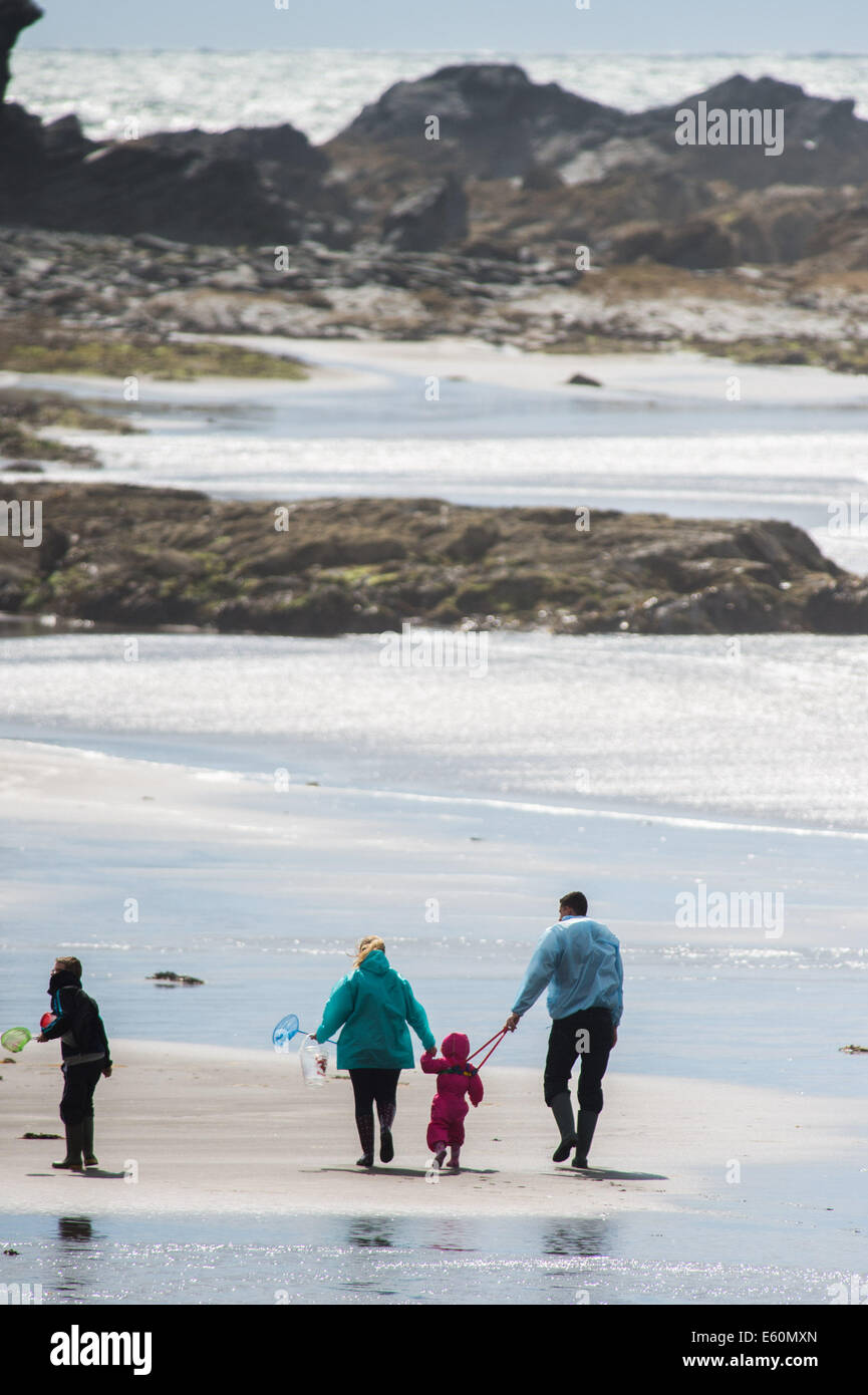 Sunday 10 August 2014, Borth Ceredigion Wales IUK.  The tail end of Hurricane Bertha brings strong winds gusting - Stock Image