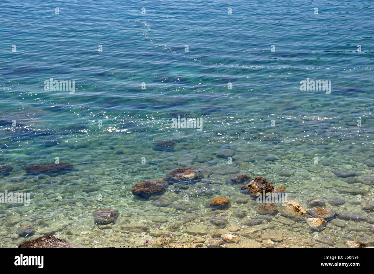Dirt floating on sea surface. Polluted beach environmental issues. Stock Photo
