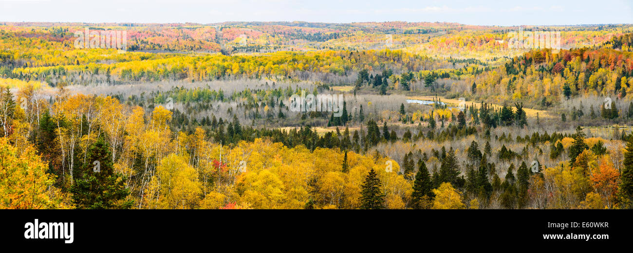 Autumn colors the valley below the Wrenshall Scenic Overlook. - Stock Image