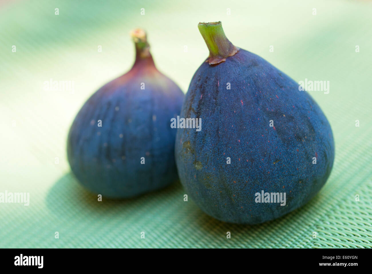 Black Purple Figs, Black Mission Figs - Stock Image