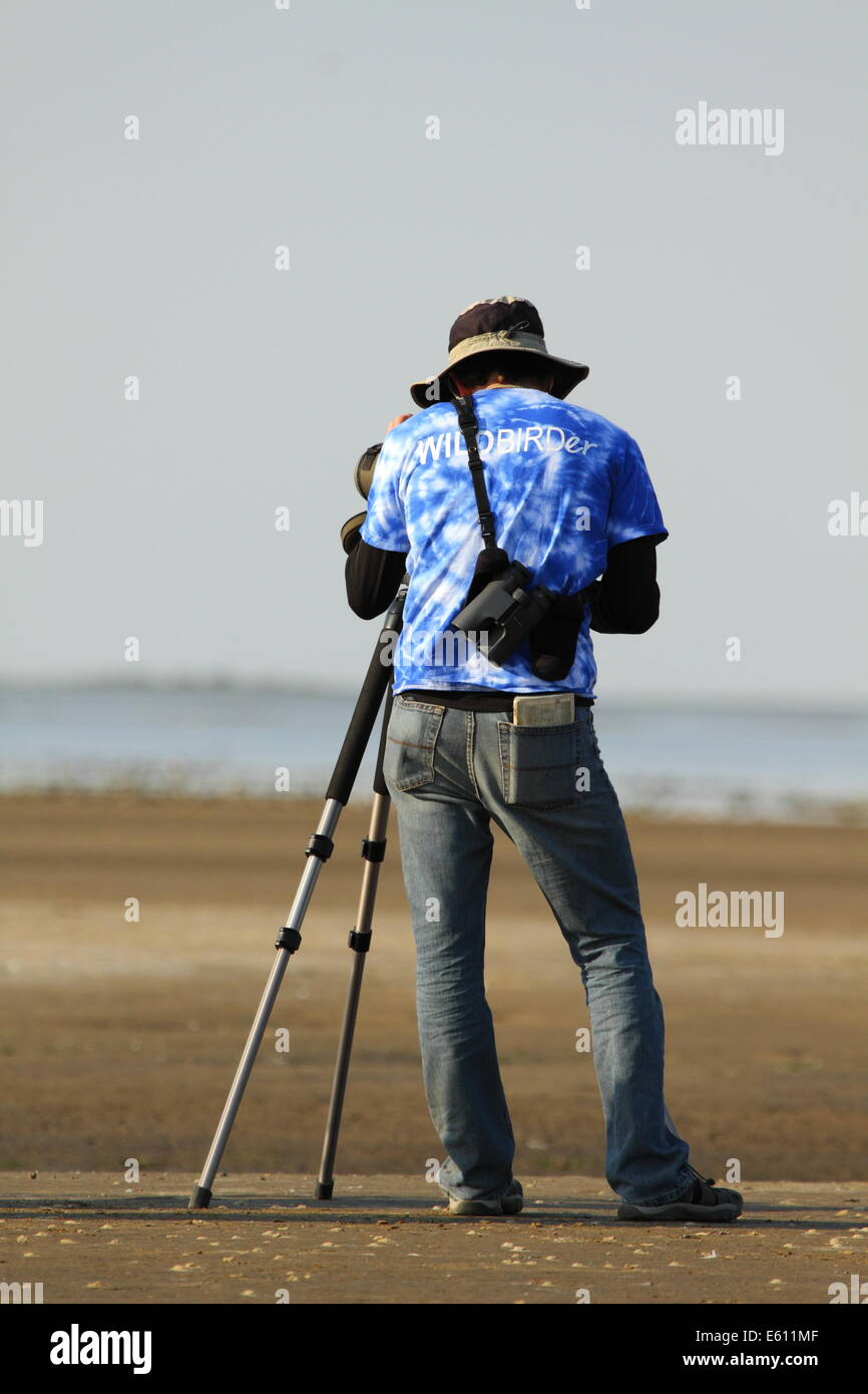 A man uses a spotting scope to identify birds along the Texas coast. - Stock Image