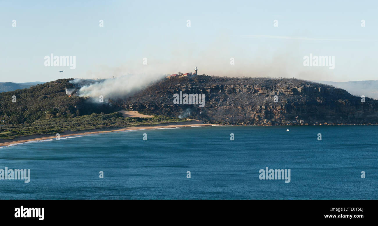 Bush Fire on Barrenjoey Headland Palm Beach New South Wales Australia 28/09/2013 - Stock Image