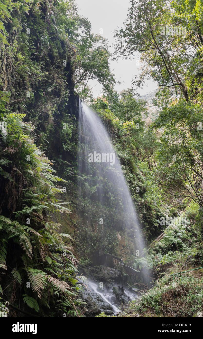 Waterfall, Barranco del Agua canyon, Laurel Forest of Los Tilos, La Palma, Canary Islands, Spain - Stock Image