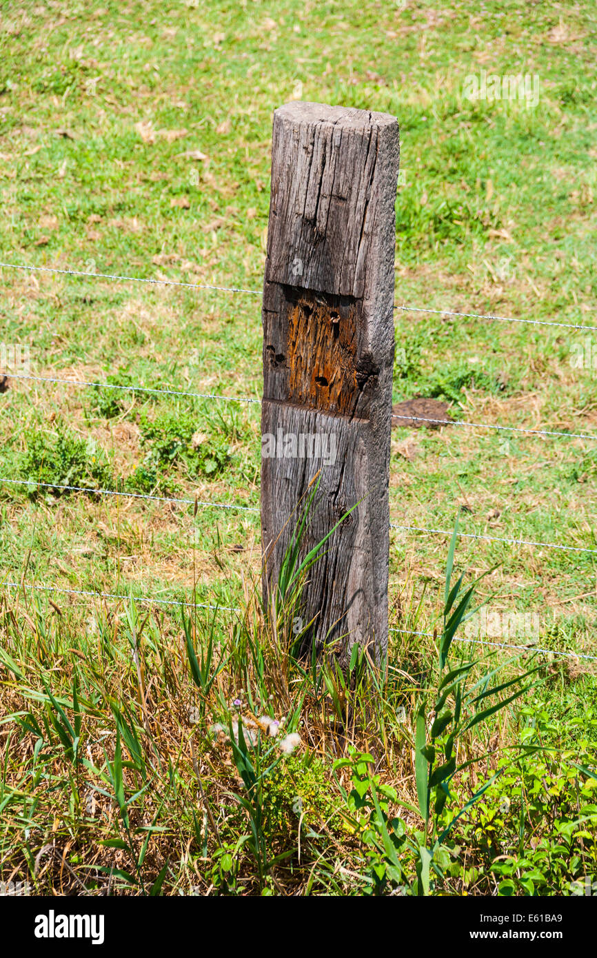 Old wooden railway sleeper used as a fence post in the Carmargue France. JMH6279 - Stock Image