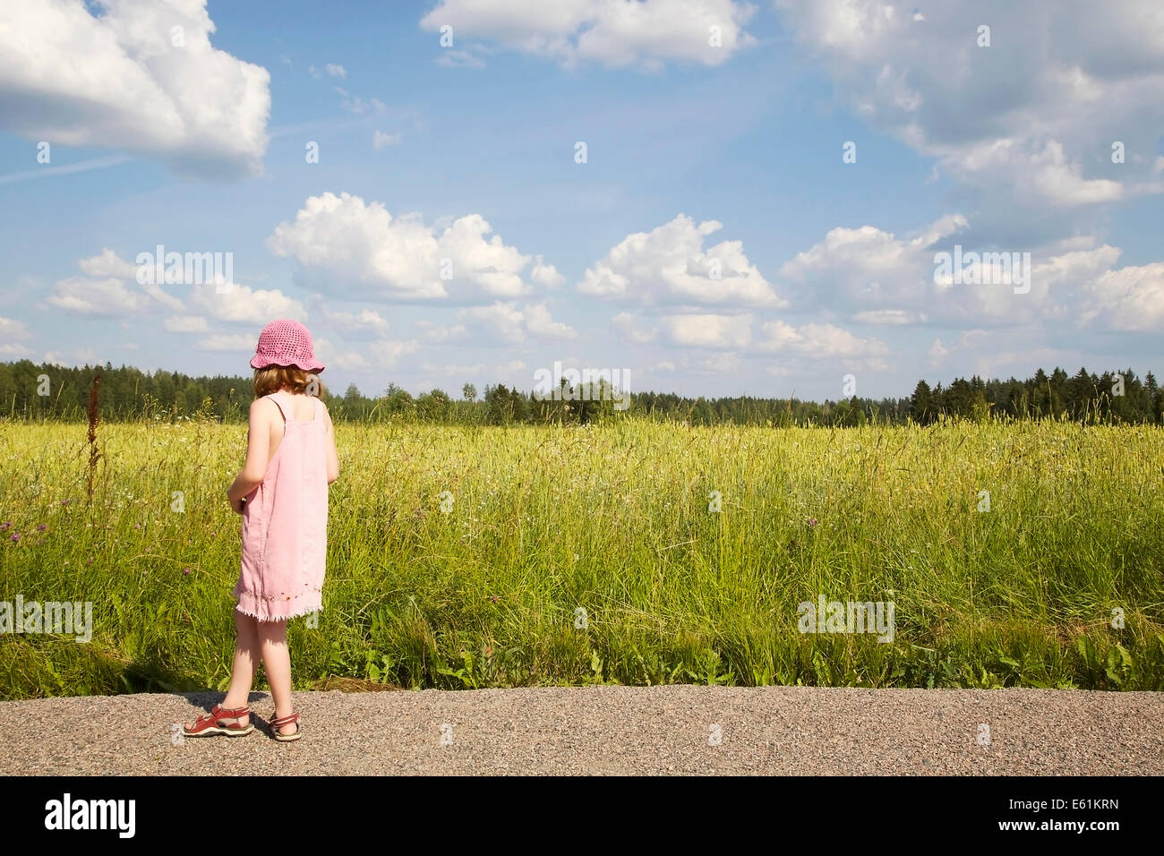 Girl standing at the edge of a cornfield looking at the field - Stock Image
